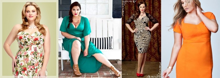 Spring Summer 2015 Plus Size Wedding Guest Dress with Guidelines